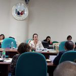 Budget hearing of cultural agencies